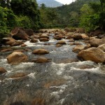 KHIRIWONG:: A Documentary on the Environment in Thailand